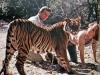 The story of Africa, U.S.A. and its proprietors, animal trainer Ralph Helfer and Daktari producer IvanTors