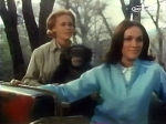 cheryl miller and judy the chimp from season one of daktari