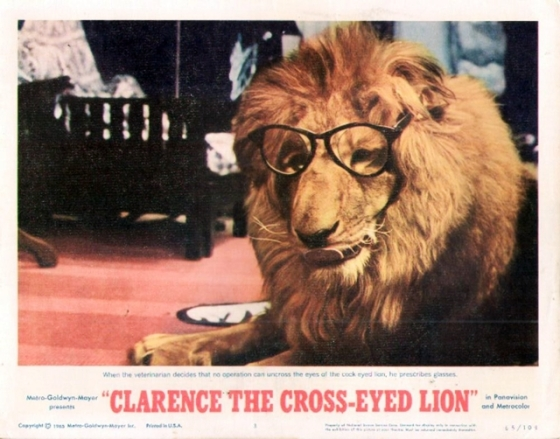 clarence the cross-eyed lion with glasses in movie