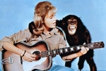 daktaritvshow.wordpress.com clarence the cross-eyed lion movie cheryl miller paula tracy judy the chimp cheryl with guitar