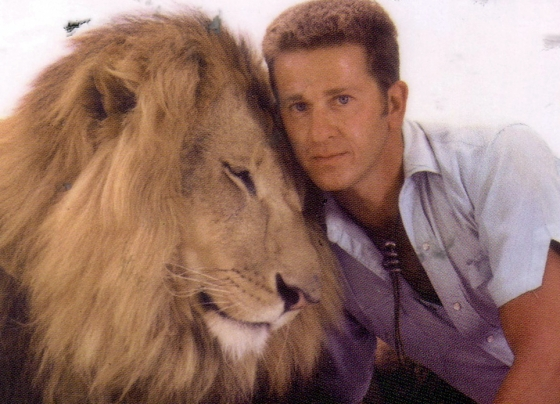 Ralph Helfer with lion, possibly his beloved Zamba