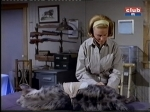 cheryl miller as paula tracy tending a sick animal on daktari