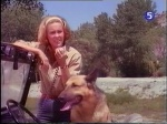 cheryl  miller as paula tracy with prince the dog from daktari season two