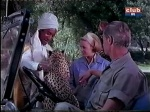 leopard with cheryl miller as paula tracy and marshall thompson as Daktari