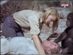 terror in the bush cheryl miller and marshall thompson daktari season 2-3