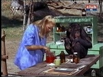 cheryl miller and judy the chimp mixing something daktari season three