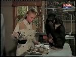 cheryl miller judy the chimp daktari season three