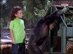 erin moran judy the chimp daktari season four-3