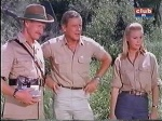 hedley marsh and paula on daktari season three