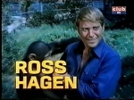 ross hagen daktari season four-2