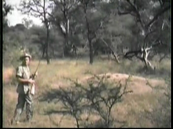 "A shot from ""Judy and the Astro-Chimp"" taken on-location of Thompson in the real African bush"