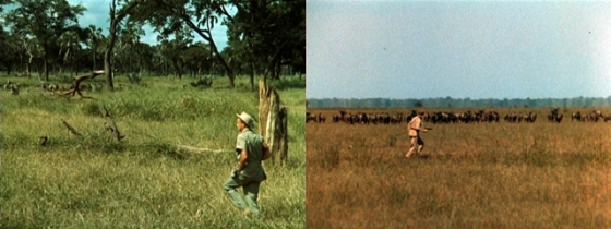 "Left:  A shot from ""Clarence the Killer"" taken on-location of Thompson in the real African bush Right:  A shot of a figure dressed as Hedley filmed on-location on the savannah"