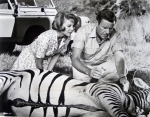 Paula and Dr. Tracy treat a zebra.